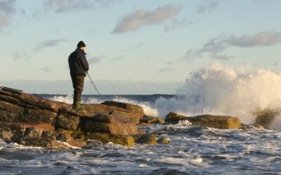 Sport fishing in the Baltic Sea for economic growth and river restoration