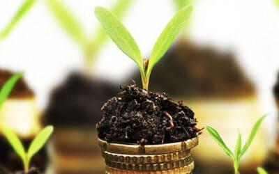 Interreg helps good ideas grow: statistics of the second seed money call